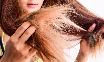Dry and Frizzy Hair Treatments At Home